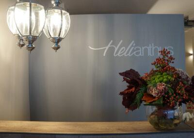 Centro Estetico Heliantus